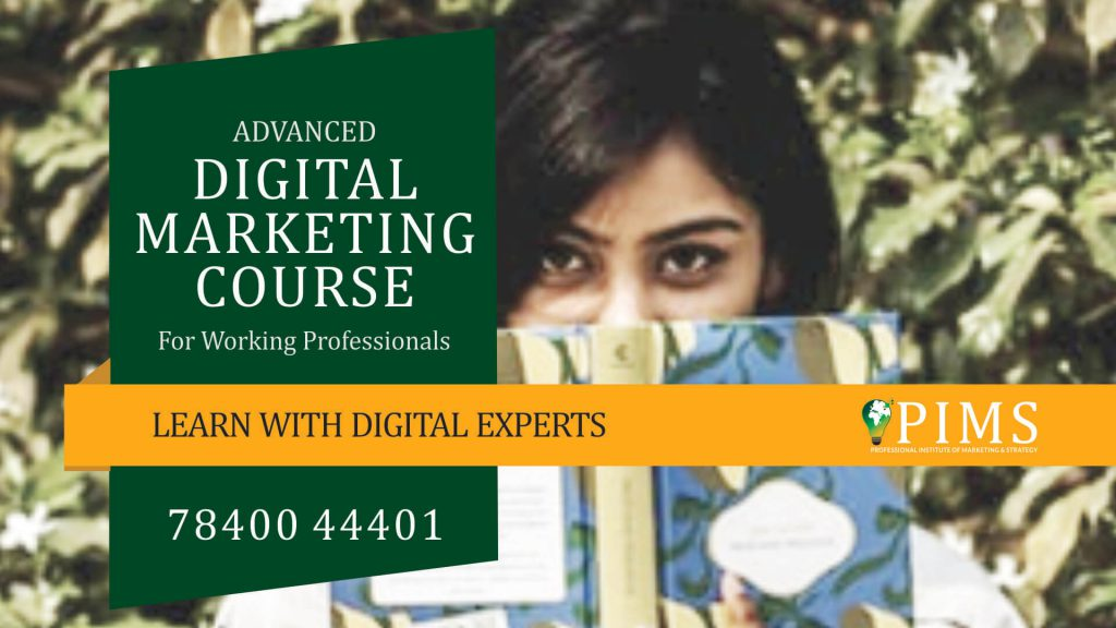 PIMS Digital Marketing Training Course Review